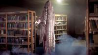 THEATRE : Virginia à la bibliothèque (Bibliothèque du Merlan)